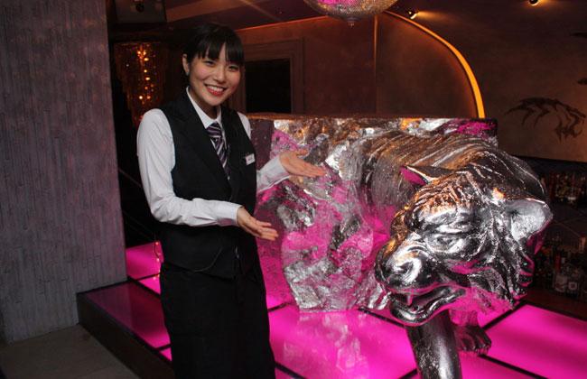 【美人店員さん】 Honokaさん Private dining VT ~Violet Tiger~ (恵比寿)